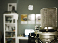 Voice-Over Acting and Casting Workshop