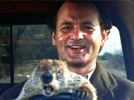 INTERACTIVE MOVIE NIGHT: Groundhog Day